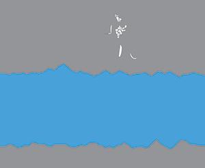 Milestone Moments